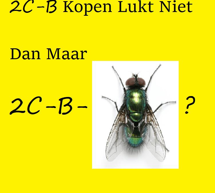 2C-B-kopen-lukt-niet-dan-maar-2C-B-FLY