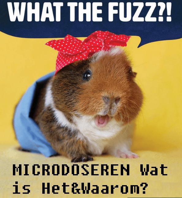 Microdoseren, Waar Een Kleine Dosis Groot In Kan Zijn